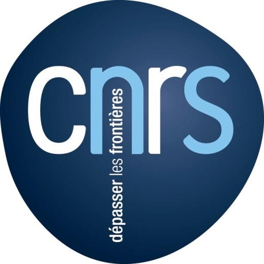 Logo CNRS - Délégation régionale Ile-de-France Villejuif